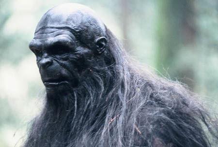 Live Bigfoot Reveals