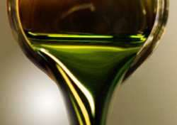 Automotive Algae Fuel