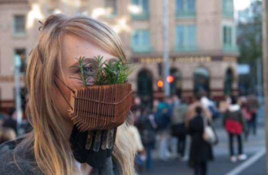 Eco Surgical Masks