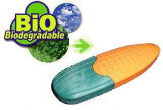Biodegradable USBs