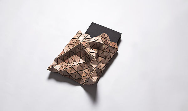 Biodegradable Book Packaging