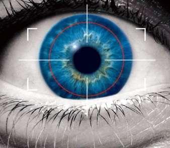 Biometric Eye Scans