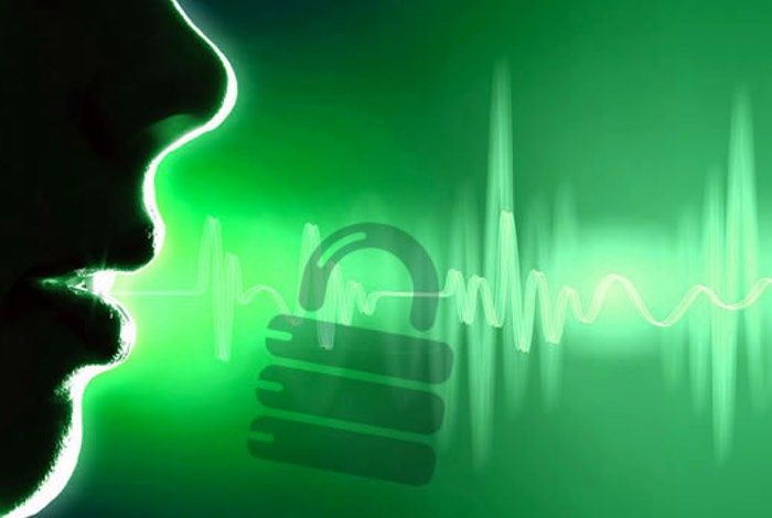 Voice Id Banking Systems Biometric Verification