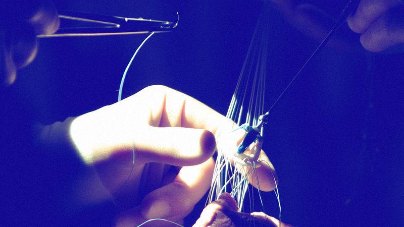 Bionic Heart Tissues