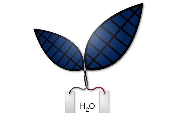 Photosynthesizing Bionic Leaves