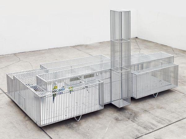 Museum-Mimicking Bird Cages