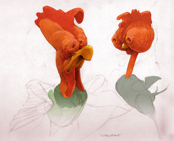 Wickedly Weird Bird Illustrations
