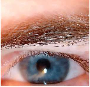 Blue Eyed People Are Smarter, Study
