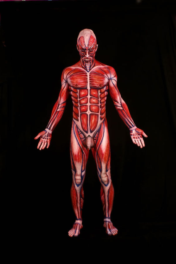 Anatomically Correct Body Art