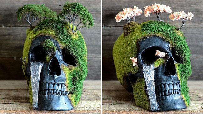 Bonsai Skull Gardens