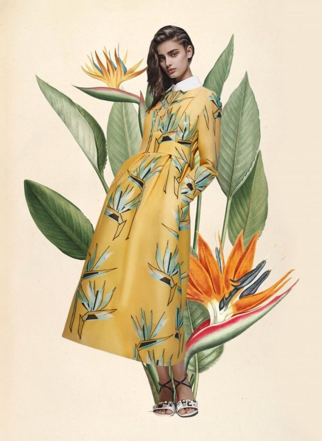 Botanical Fashion Collages Collage