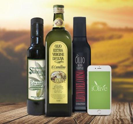 NFC Olive Oil Bottles