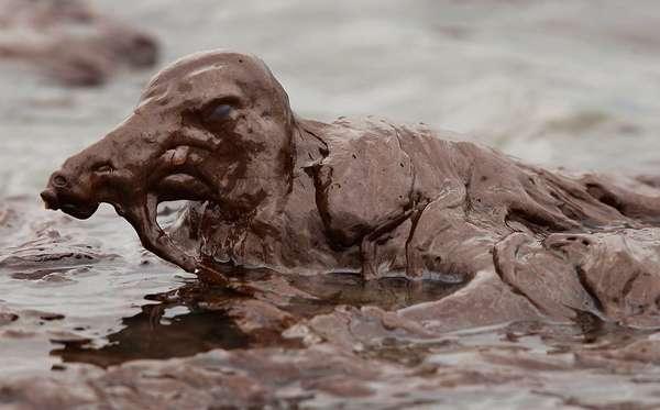 Oil Spill Wildlife