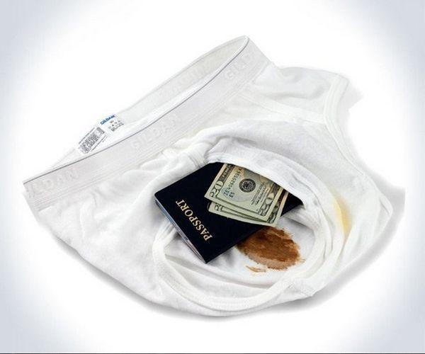 Hidden Underwear Safes