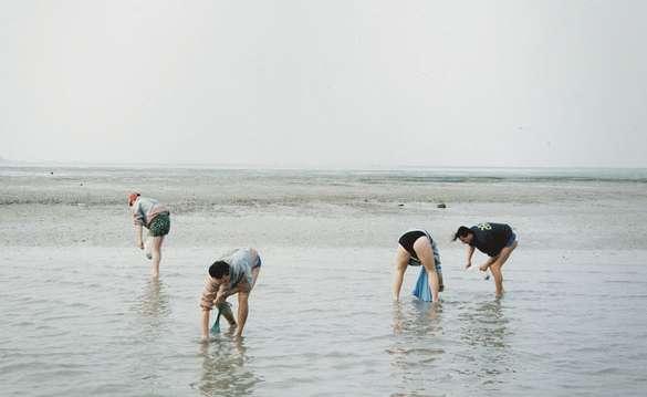Beachcombing Photography