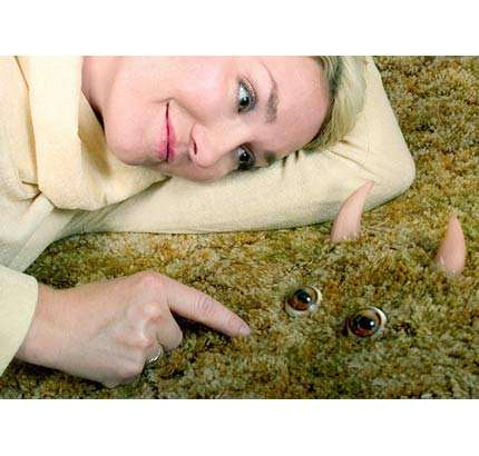 Carpet Monsters and Rabbit Heads