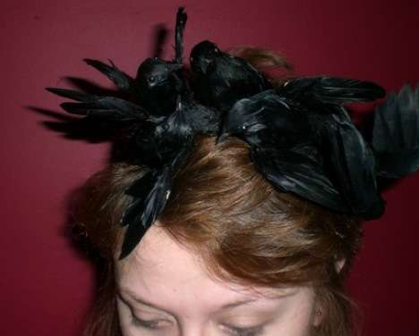 Bird-Brained Headwear