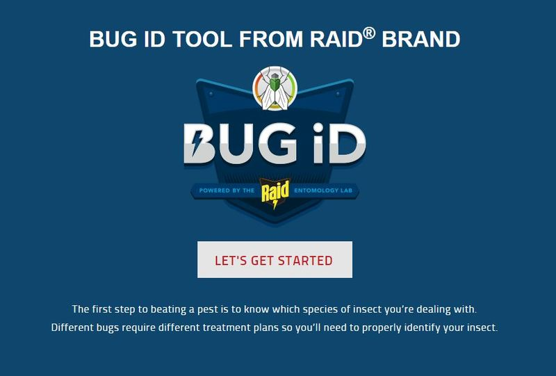 Customized Bug Repellents