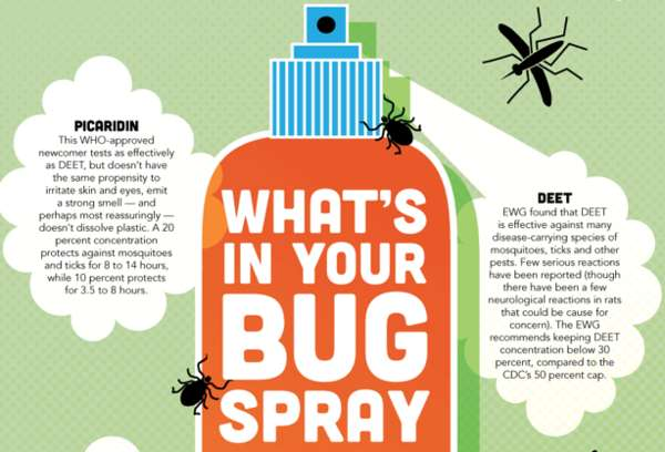bug spray chemicals