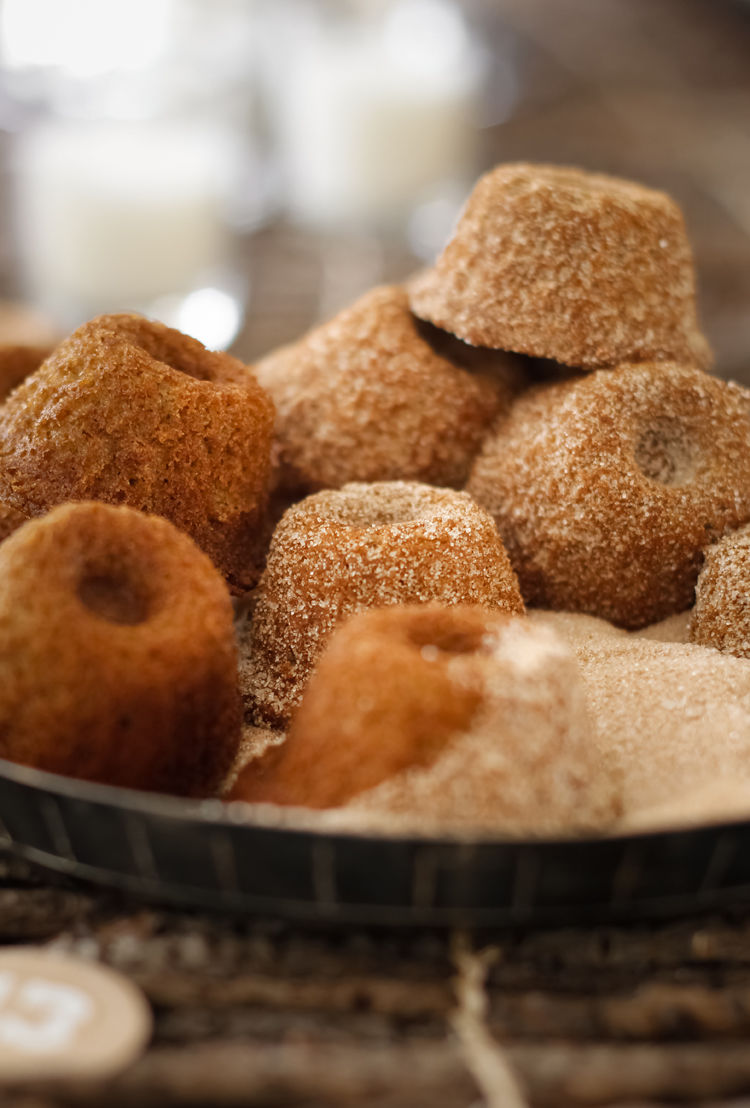 Gingerbread Donut Cakes