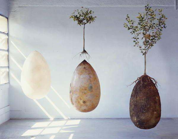 Eco-Friendly Burial Pods