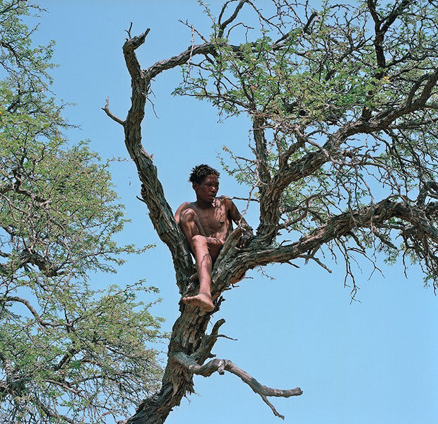African Bushmen Photography