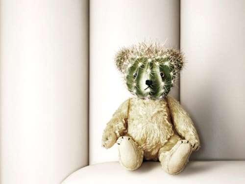 cactus-teddy-bear-worst-toy-ever.jpeg