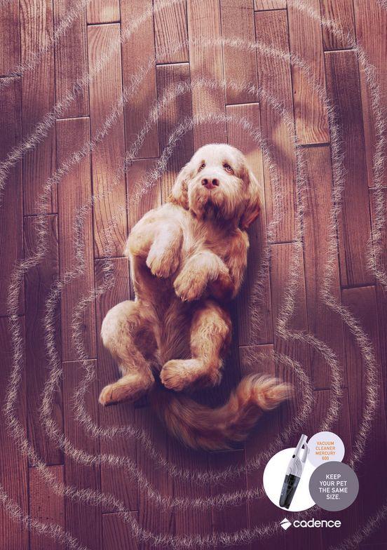 Furry Ripple Effect Ads