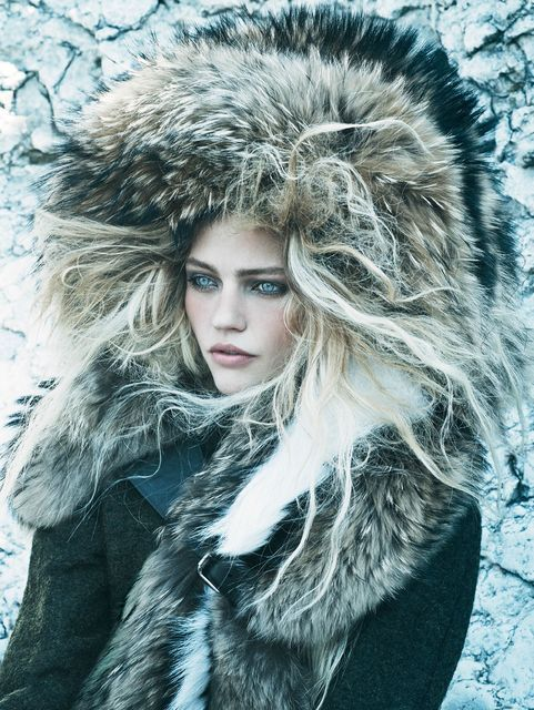 Aesthetic Arctic Editorials