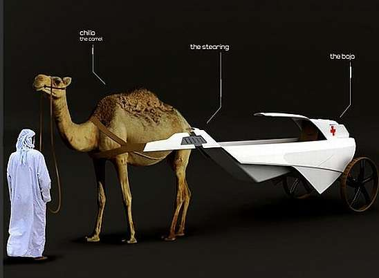 Camel-Drawn Medical Carriages