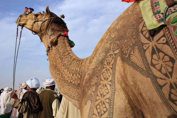 Intricate Camel Hair Art
