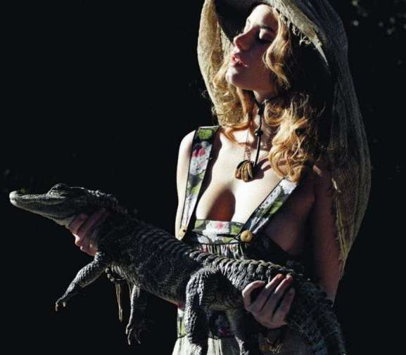 Crocodilian Fashion Sidekicks