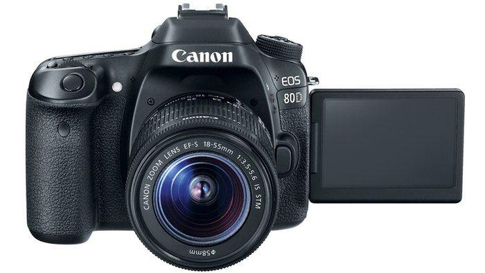 Budding Videographer Cameras