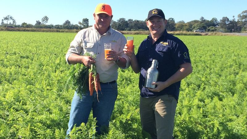 Carrot-Infused Beers