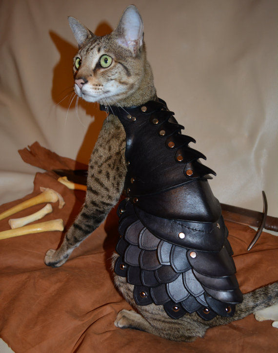 Denfensive Feline Costumes