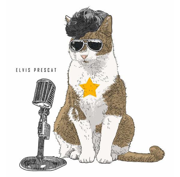 Celebrity Cat Costume Cartoons