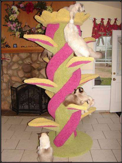 Artistic Cat Trees