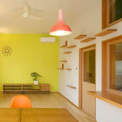 Feline-Centric Home Designs
