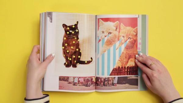 Cat-Centric Magazines