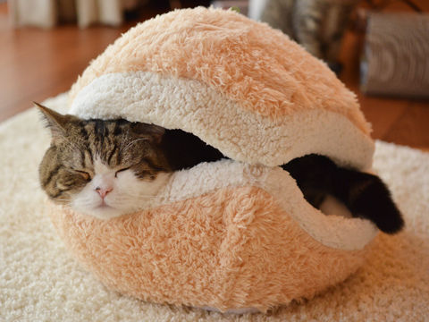 Burger-Shaped Cat Pillows