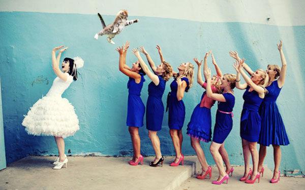 Cat-Throwing Bridal Memes