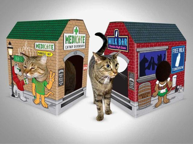 Playful Cat Towns