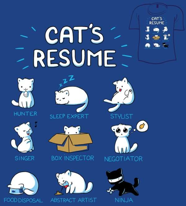 cats resume by fablefire