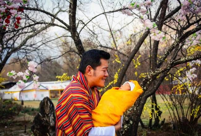 Celebratory Tree-Planting Campaigns