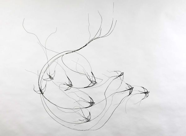 Wire Bird Sculptures (UPDATE)