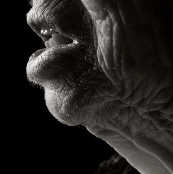 Poignant Centenarian Photography