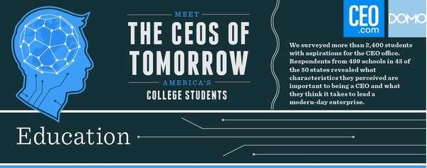 Future Entrepreneur Infographics