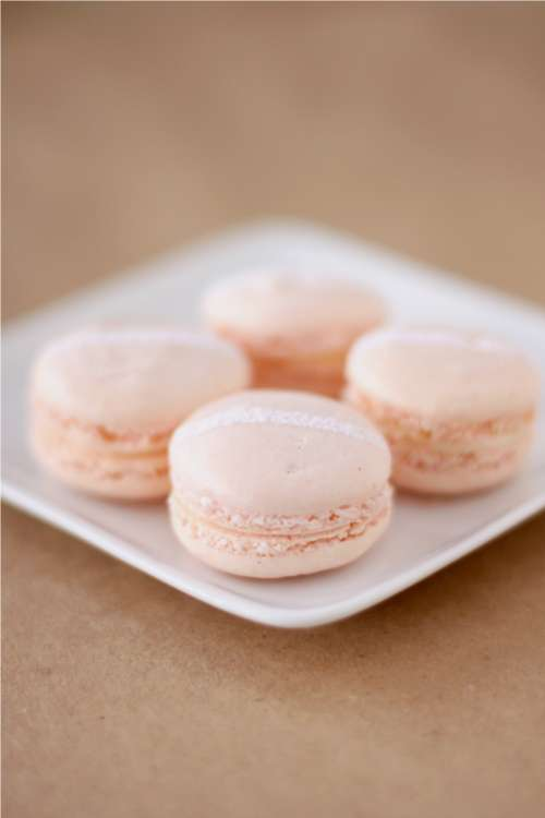 Champagne and Roses Macarons