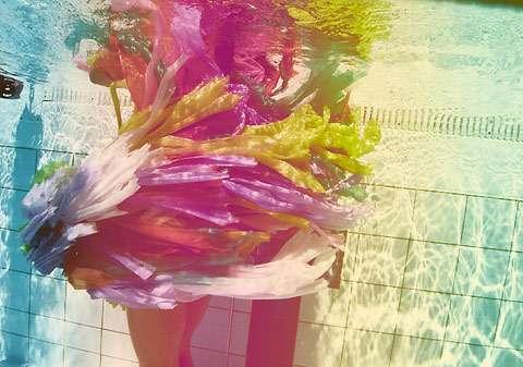 Aquatic Rainbow Photography