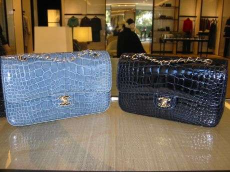 $24,000 Crocodile Skin Clutch  Eco-Friendly ?